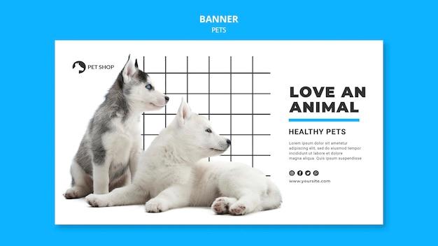 Plantilla de banner de mascotas con foto