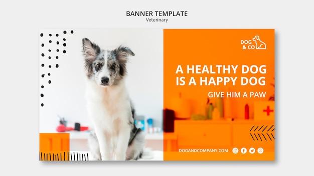 Plantilla de banner con veterinaria