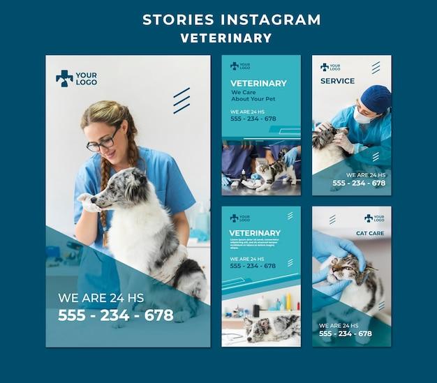 Plantilla de historias de instagram de clínica veterinaria