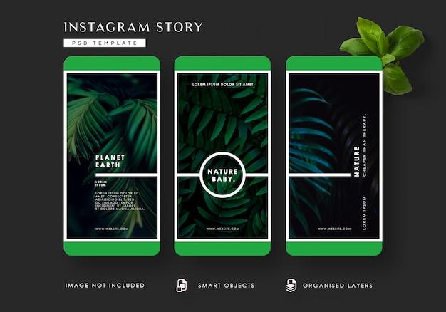 Plantilla de historias de instagram de hojas tropicales