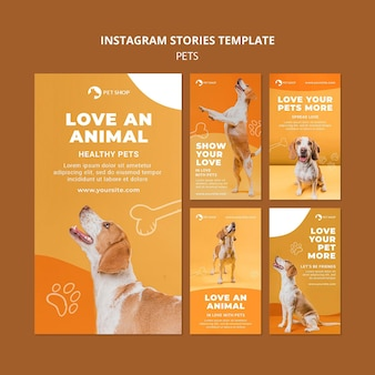 Plantilla de historias de instagram de tienda de mascotas