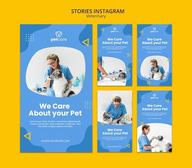 Plantilla de historias de instagram veterinaria de mujer y perro