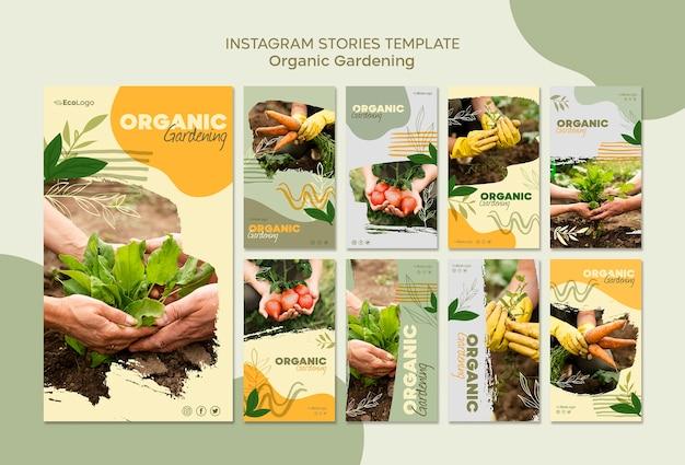 Plantilla de historias de jardinería orgánica con foto