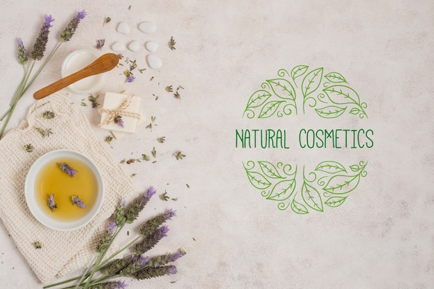 Plantilla de logotipo de cosmética natural