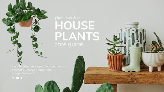Plantilla psd de guía de cuidado de plantas de interior para redes sociales