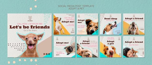 Plantilla de publicación en redes sociales con adopción de mascotas