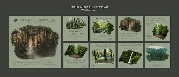 Plantilla de publicación de redes sociales del parque nacional de rosewood