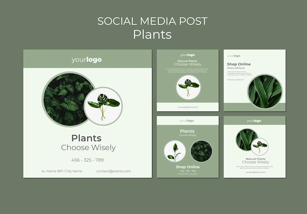 Plantilla de publicación de redes sociales de plants shop