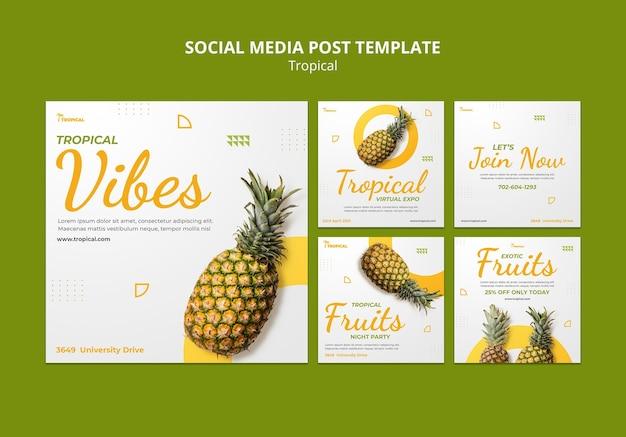 Plantilla de publicación de redes sociales de tropical vibes
