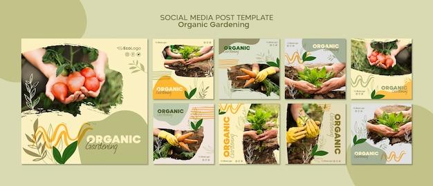 Plantilla de publicaciones de jardinería orgánica con foto