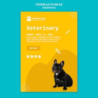Plantilla de volante cuadrado veterinario