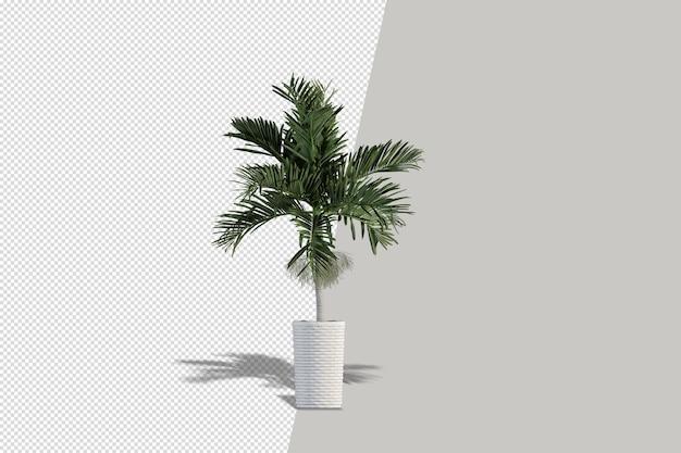 Potplanten bloemen in 3d-rendering geïsoleerd