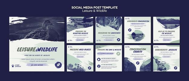 Publicación en redes sociales de ocio y vida silvestre
