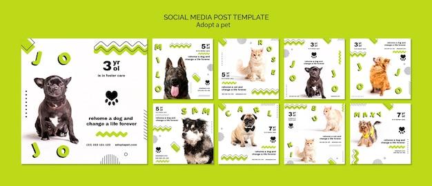 Publicación de redes sociales sobre adopción de mascotas