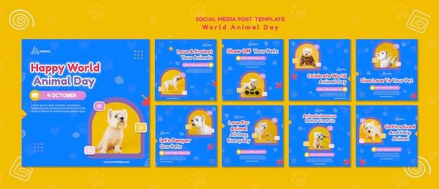 Publicaciones en redes sociales del día mundial de los animales