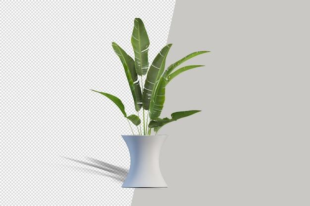 Realistische plant in pot geïsoleerd 3d-rendering