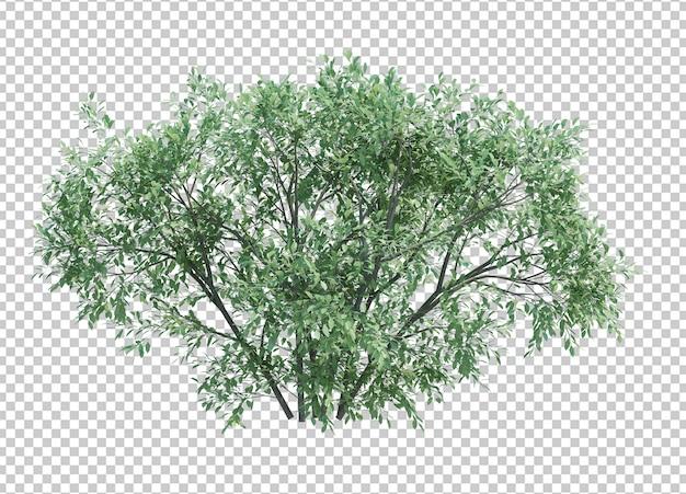 Render 3d del árbol floreciente