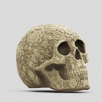Render 3d isométrico del cráneo aislado