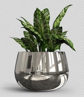 Render de planta aislada. vista frontal isométrica en transparente