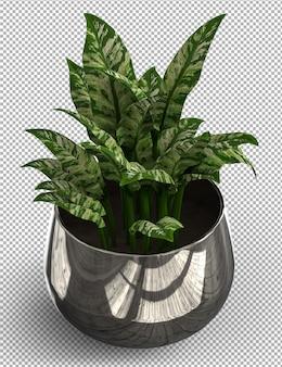 Render de planta aislada. vista isométrica en transparente.