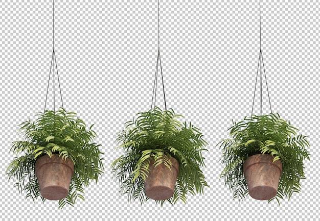 Representación 3d de helecho en macetas colgantes