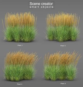 Representación 3d de karl foerster feather reed grass