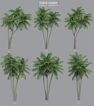 Representación 3d de palmeras de coco