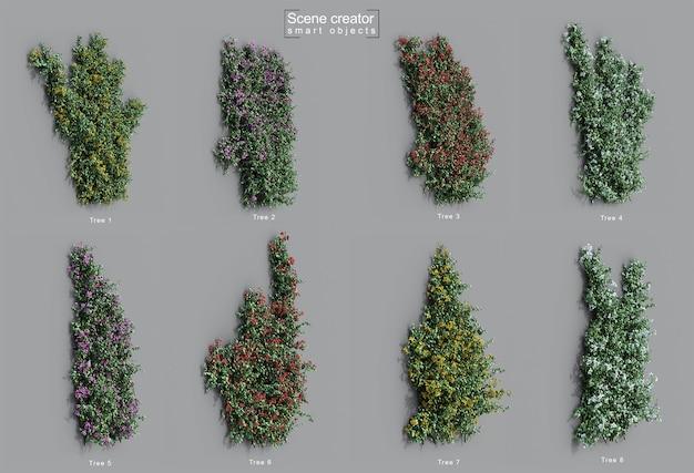 Representación 3d de la pared rastrera de buganvillas