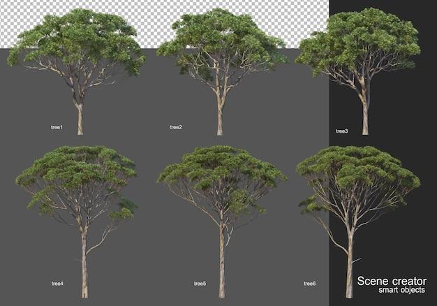 Representación 3d, varios diseños de árboles.