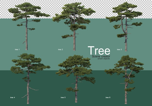 Representación 3d, varios tipos de diseños de árboles.
