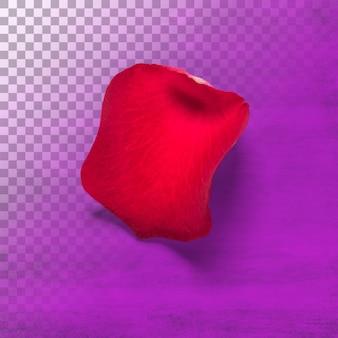 Rode rozenblaadjes geïsoleerd