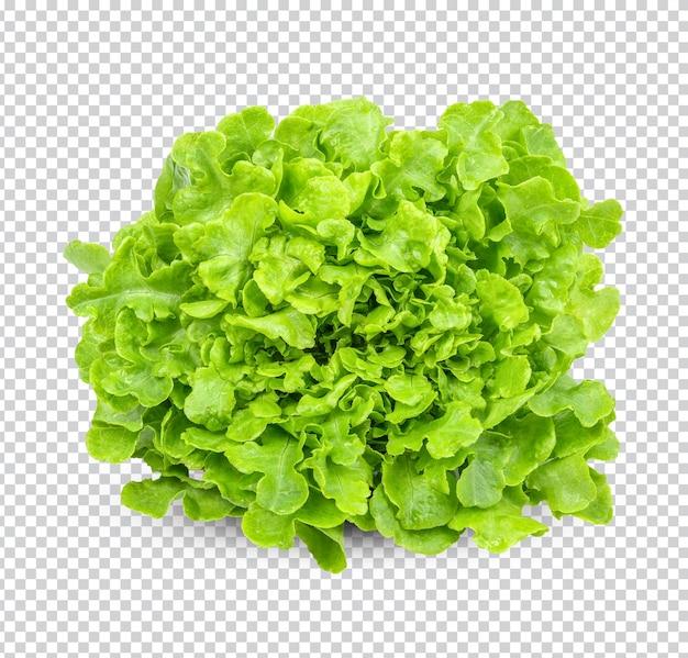 Romaine sla salade geïsoleerd premium psd