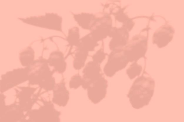 Schaduw van bladeren op een muur Premium Psd