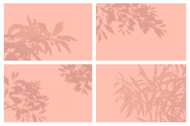Schaduw van tropische bladeren in presentatieset met natuurlijke lichteffecten