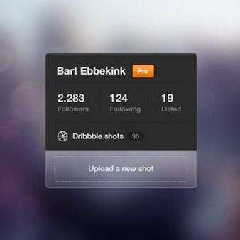 Seguono widget di profilo sociale psd