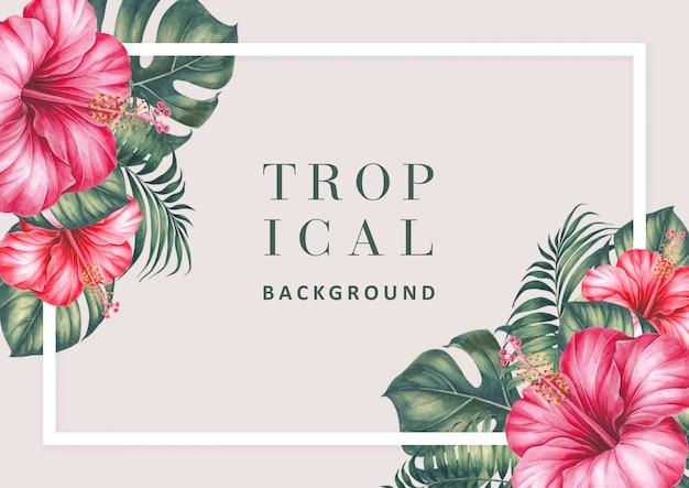 Sfondo tropicale con ibisco e palme.