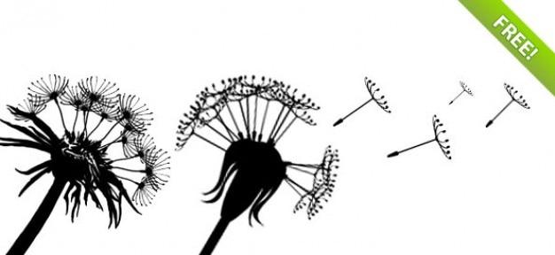 Siluetas psd diente de león con semillas de vuelo