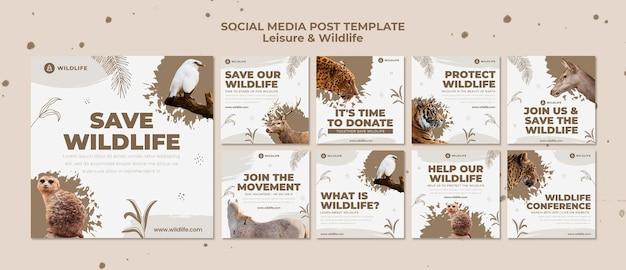 Sociale mediapost voor recreatie en dieren in het wild