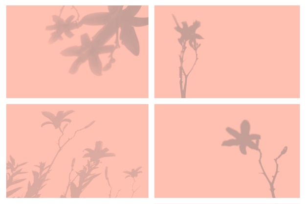 Sombra de hojas tropicales en conjunto de presentación de efectos de iluminación natural