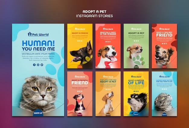 Storie di instagram ambientate per l'adozione di animali domestici con animali