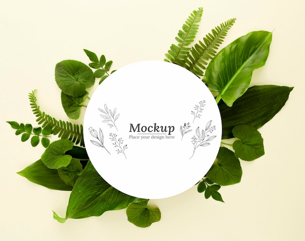 Surtido de hojas verdes de vista superior con maqueta