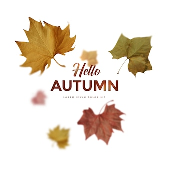 Tarjeta de hojas de otoño