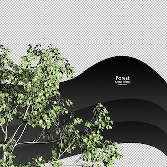 Top bomen uitknippad bomen geïsoleerde 3d boom weergave