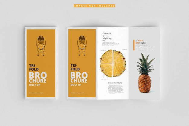 Tri-fold brochure mockups