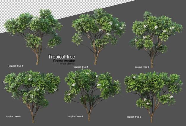 Tropische bomen en planten in 3d-rendering