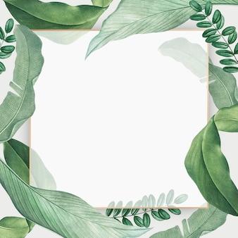 Tropische paradijskaart
