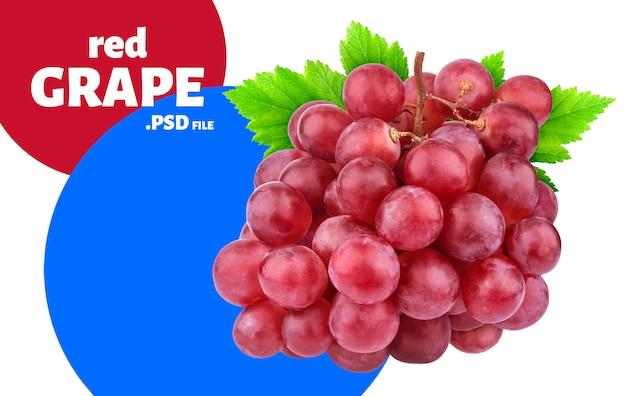 Uva roja con pancarta de hojas
