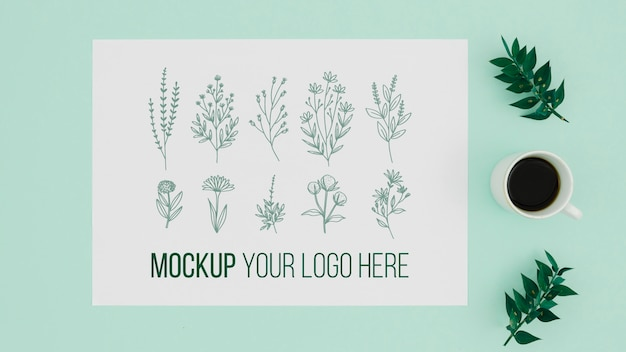 Vari disegni di mock-up botanici di foglie