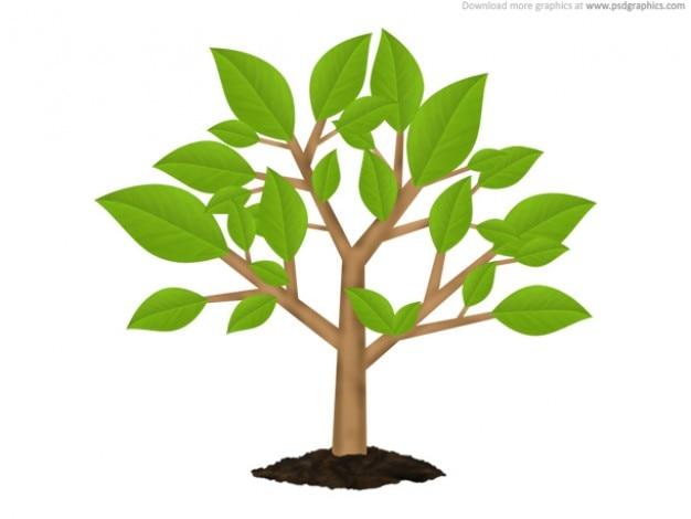 Verde albero ambiente simbolo (psd)