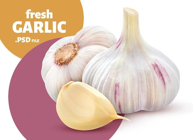 Verdura fresca dell'aglio isolata, insegna